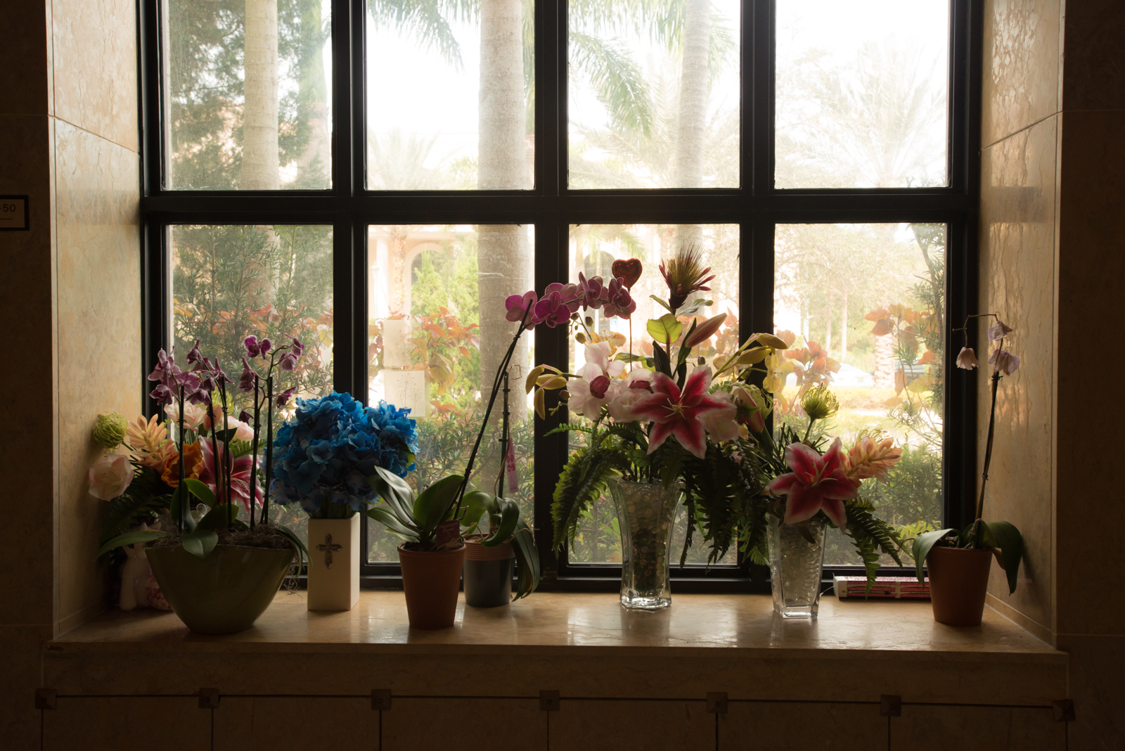 grieving flowers gathered in a window