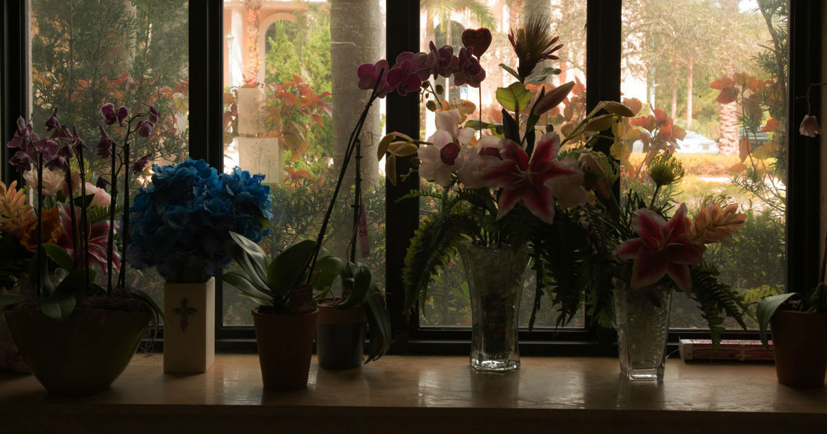 silhouette of memorial flowers